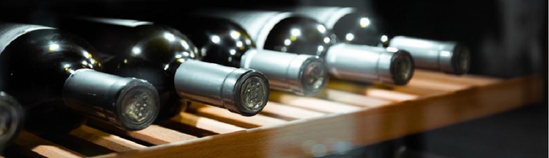 Beste wijnkoelkast