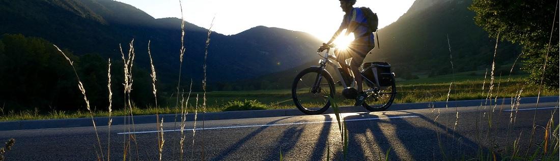 beste elektrische fiets