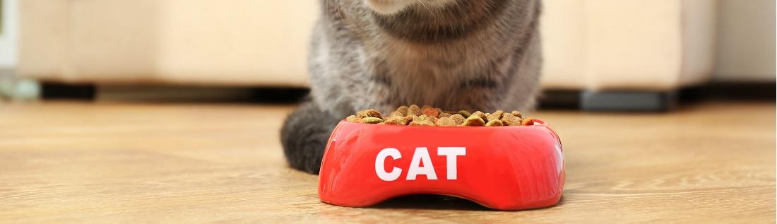Beste kattenvoer