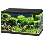 Ciano Aquarium 60 Led CF80
