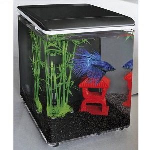 SuperFish Betta 8 kit