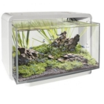 SuperFish Home 25 wit