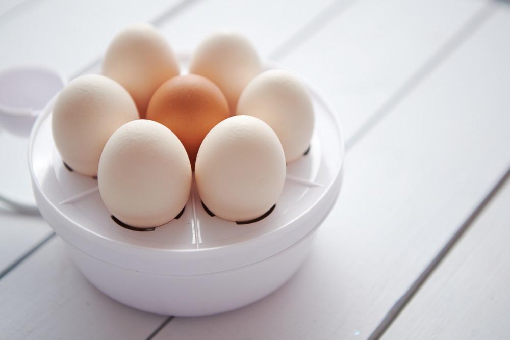 Eierkoker beste