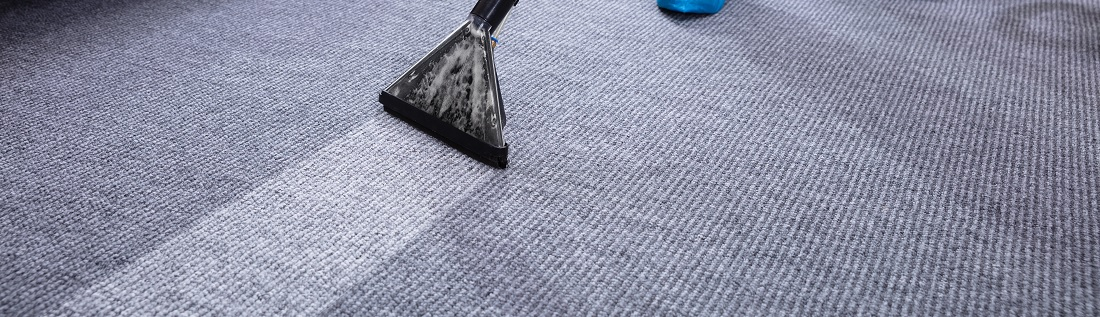 Beste tapijtreiniger