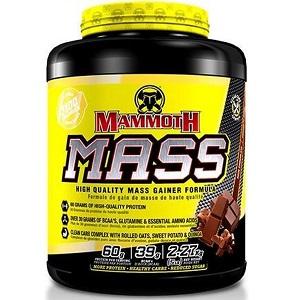 Interactive Nutrition Mammoth Mass